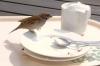 1341556_hungry_bird