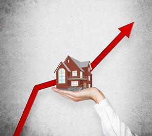 sydney eastern suburbs property market
